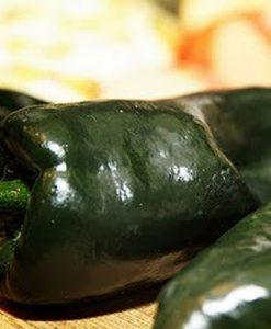 Poblano - chili