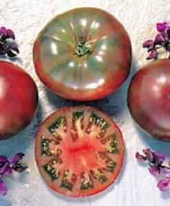 Cherokee Purple Eko - bifftomat