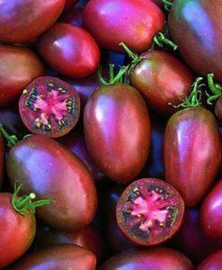 Ukranian Purple - plommontomat