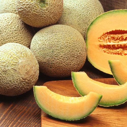 Cantaloupe di Charentais - cantaloupmelon