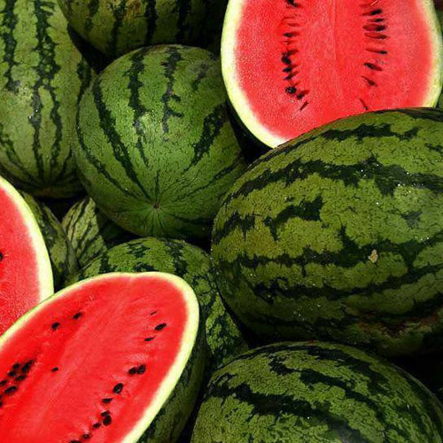 Jubilee - vattenmelon